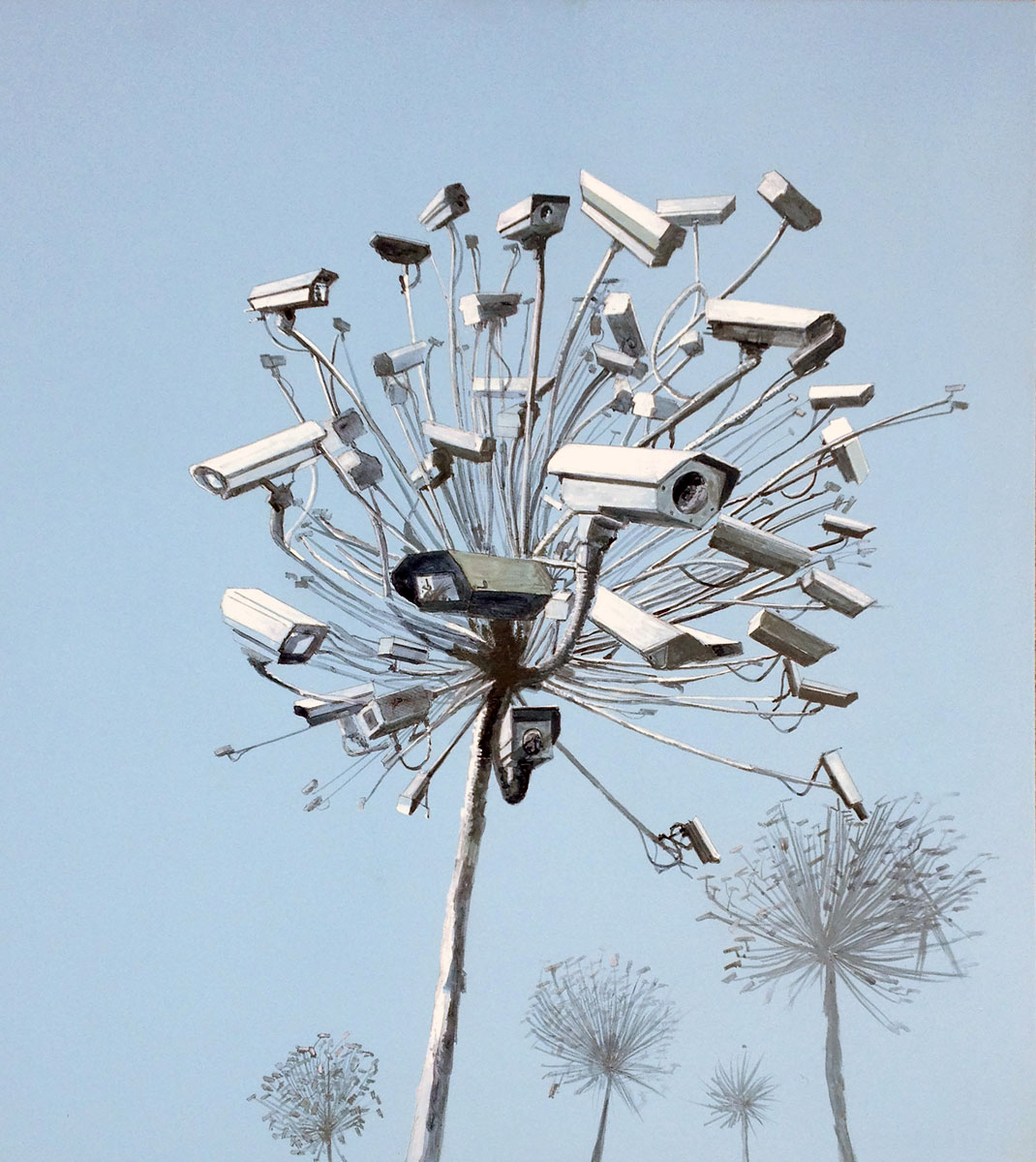 Untitled (Tree Cameras 2)