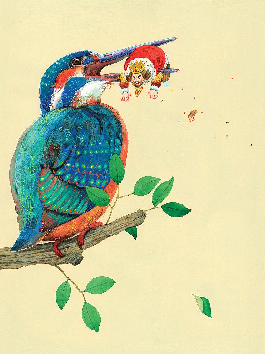 Kingfisher_SILA2